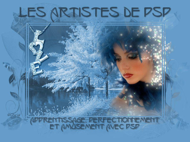 Les artistes de Psp