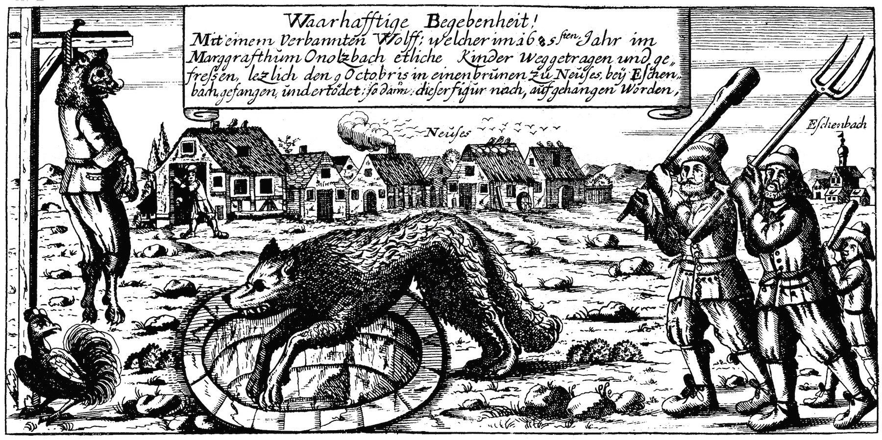 The Wolf Eschenbach