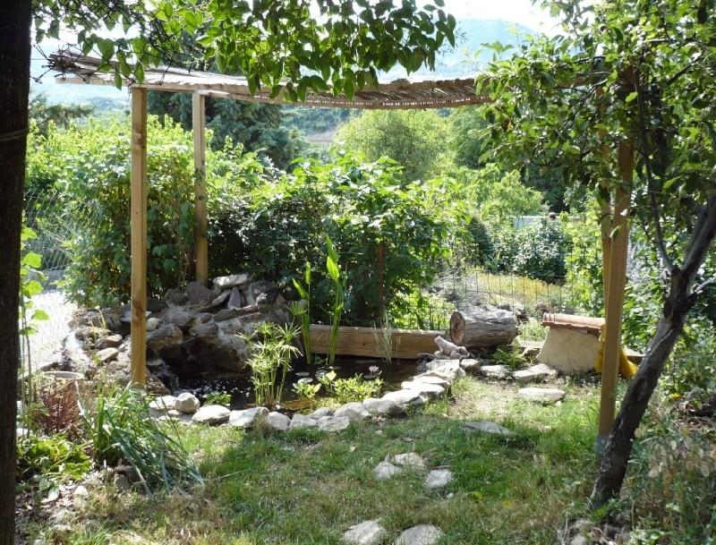 faire de l ombre au bassin au jardin forum de jardinage. Black Bedroom Furniture Sets. Home Design Ideas