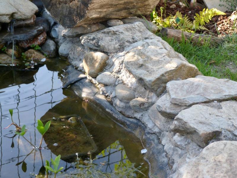 nature bassin la mare et le bassin de jardin naturel afficher le sujet tancheit de la. Black Bedroom Furniture Sets. Home Design Ideas