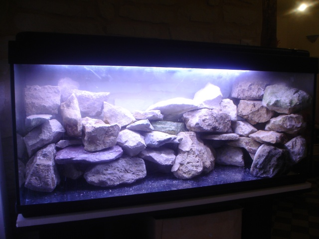 aquarium 300l meuble accessoires a vendre. Black Bedroom Furniture Sets. Home Design Ideas