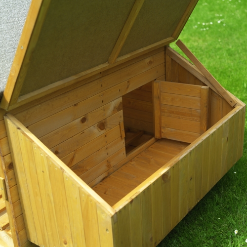 cage pour cochon d 39 inde. Black Bedroom Furniture Sets. Home Design Ideas