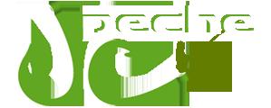logo-w10.png