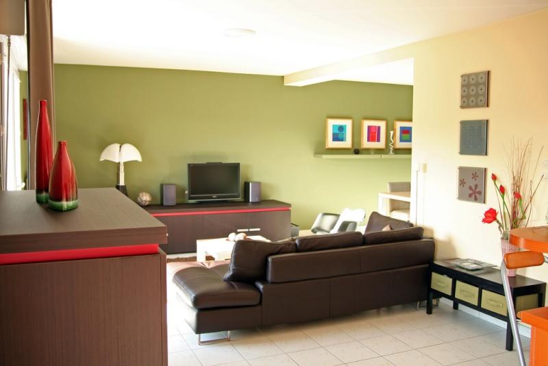 Conseil peinture am nagement salon cuisine ouverte for Conseil couleur peinture cuisine