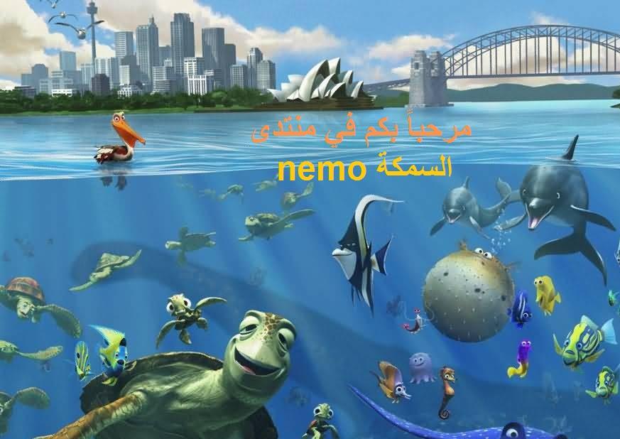 السمكة NEMO