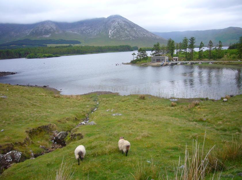 road trip irlande et tourist trophy 2010 sur l ile de man. Black Bedroom Furniture Sets. Home Design Ideas