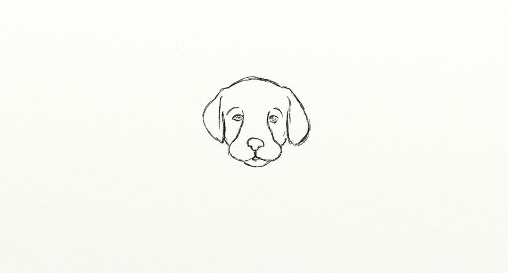 Tete de chien - Dessin chien facile ...