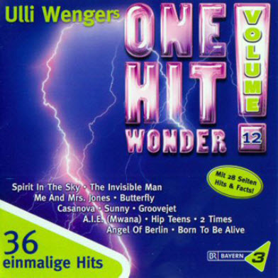 VA - Ulli Wengers One Hit Wonder Vol. 12 (2010)