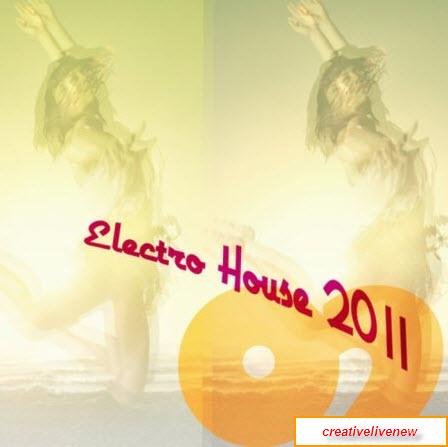 Electro House 2011 (2010)