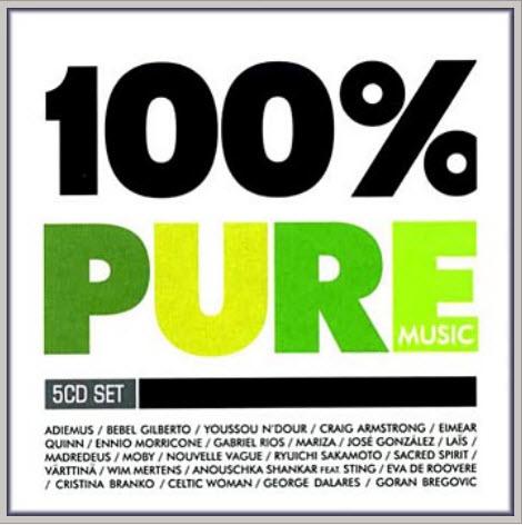 100% Pure Music (2008)