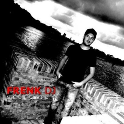 VA - Frenk DJ Selection (2010)
