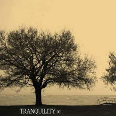 VA - Tranquility 001 (2010)