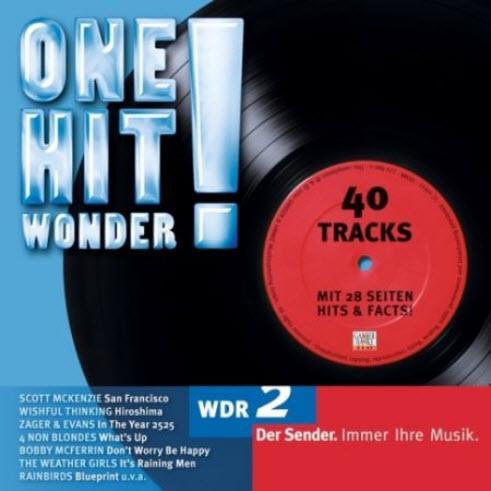 VA - WDR2 One Hit Wonder (2010)