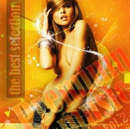 VA - Premium music vol.2 (2010)