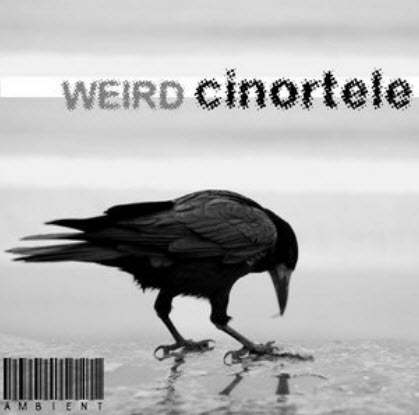 [VA] Weird By Cinortele(1CD) Ambient 2010