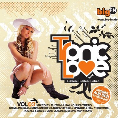 VA - bigFM Tronic Love Vol. 3 (2010)