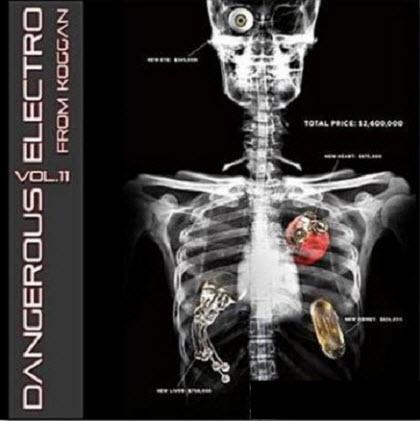 VA - Dangerous Electro Vol.11 (2010)