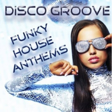 VA-Disco Groove: Funky House Anthems (2011)