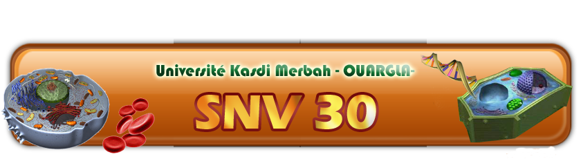 forum snv ouargla