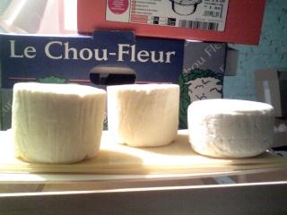 fromages au début de la maturation